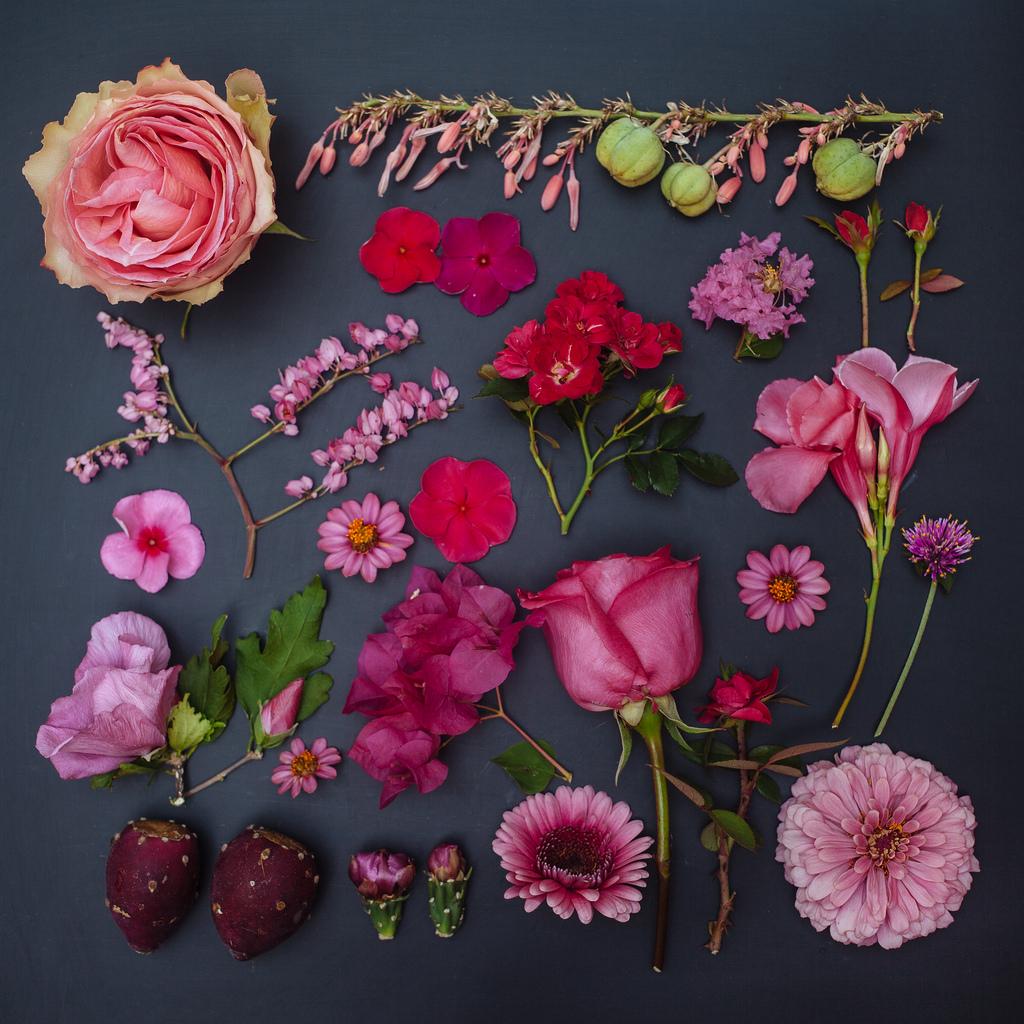 everythingwithatwist-blincoe-flower-01