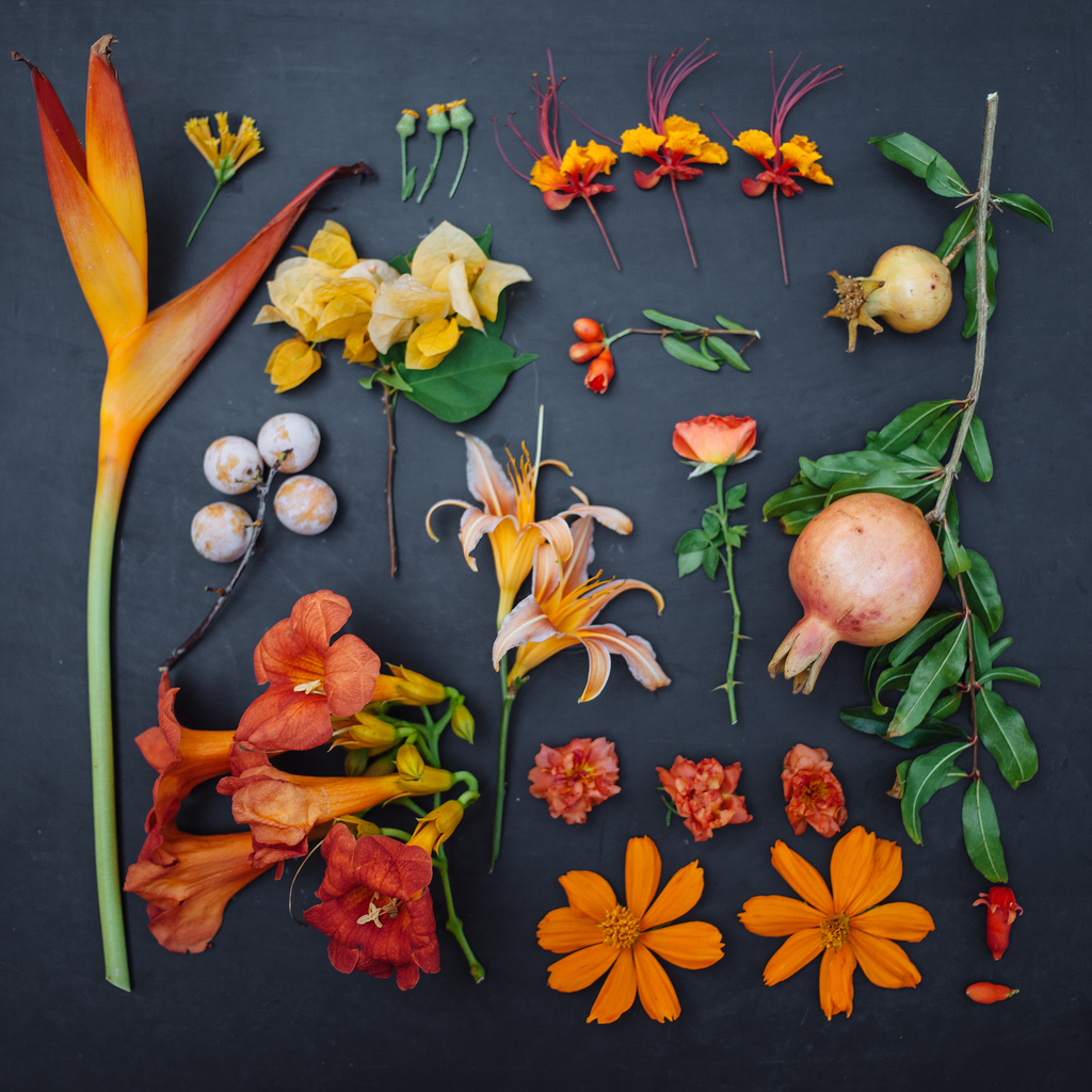everythingwithatwist-blincoe-flower-02