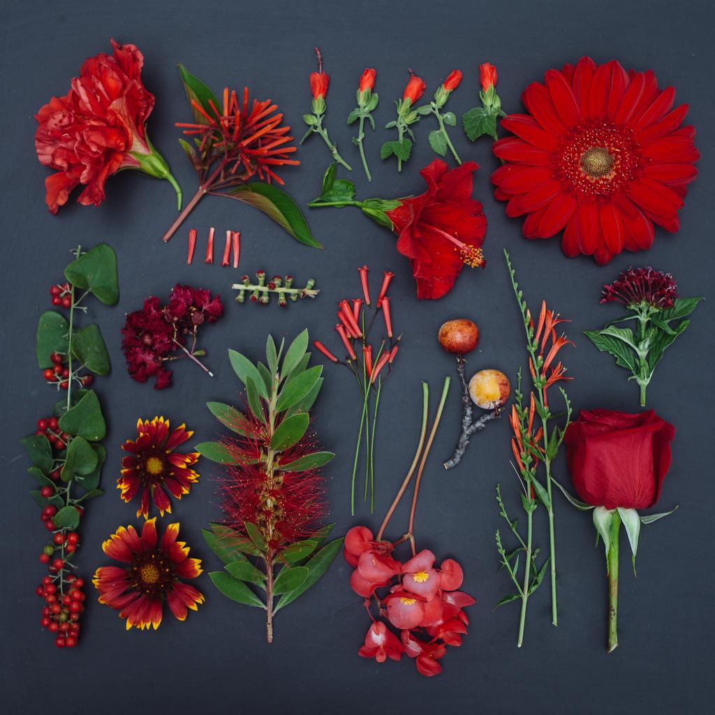 everythingwithatwist-blincoe-flower-03