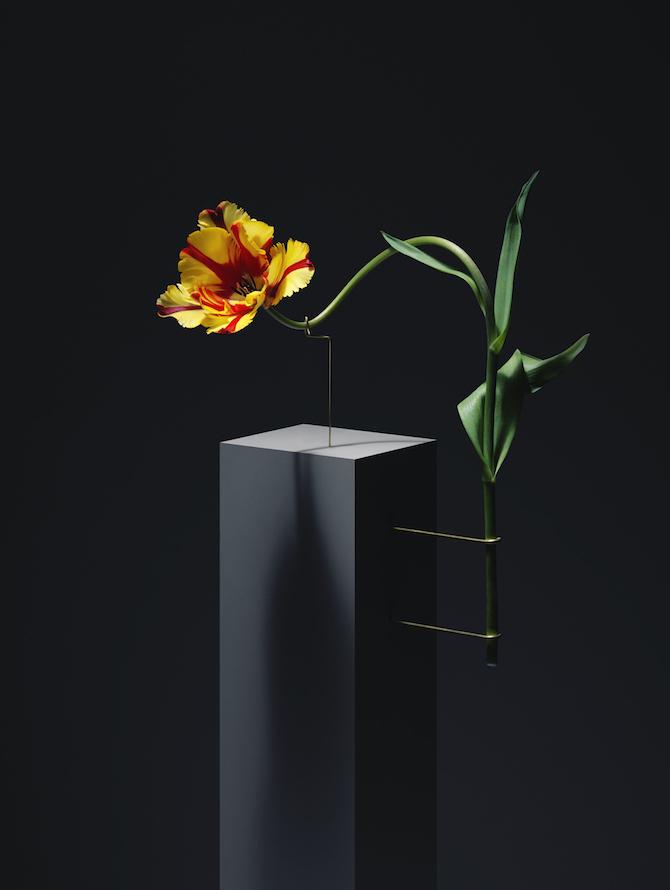 flower postures carl kleiner everythingwithatwist