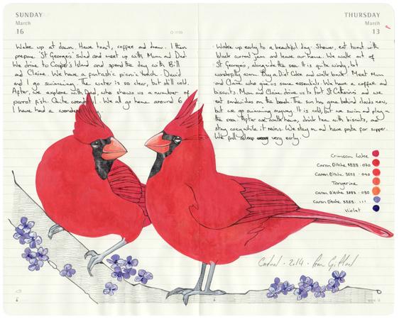 fran-giffard-birds-everythingwithatwist-01