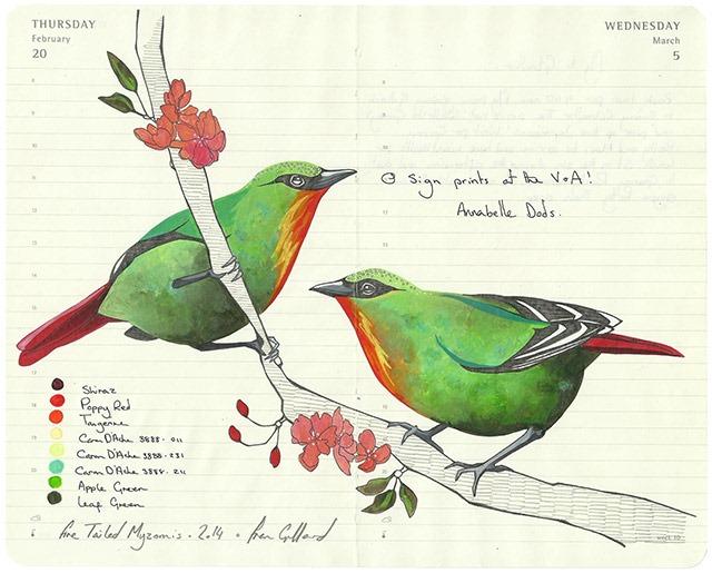 fran-giffard-birds-everythingwithatwist-05