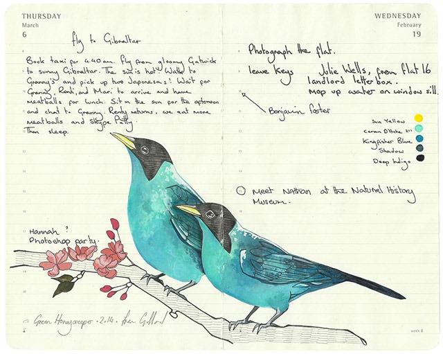 fran-giffard-birds-everythingwithatwist-06