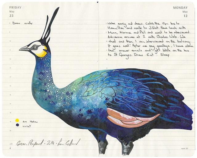 fran-giffard-birds-everythingwithatwist-08