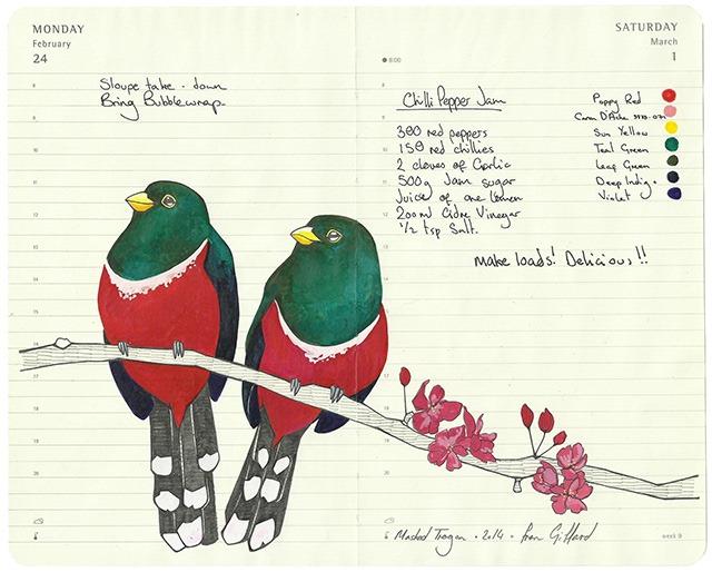 fran giffard birds everythingwithatwist