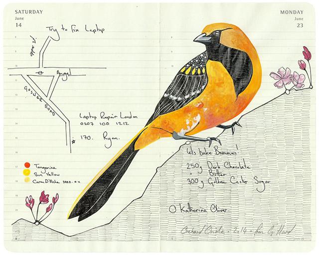 fran-giffard-birds-everythingwithatwist-10