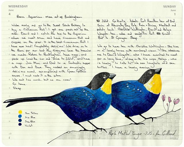 fran-giffard-birds-everythingwithatwist-11