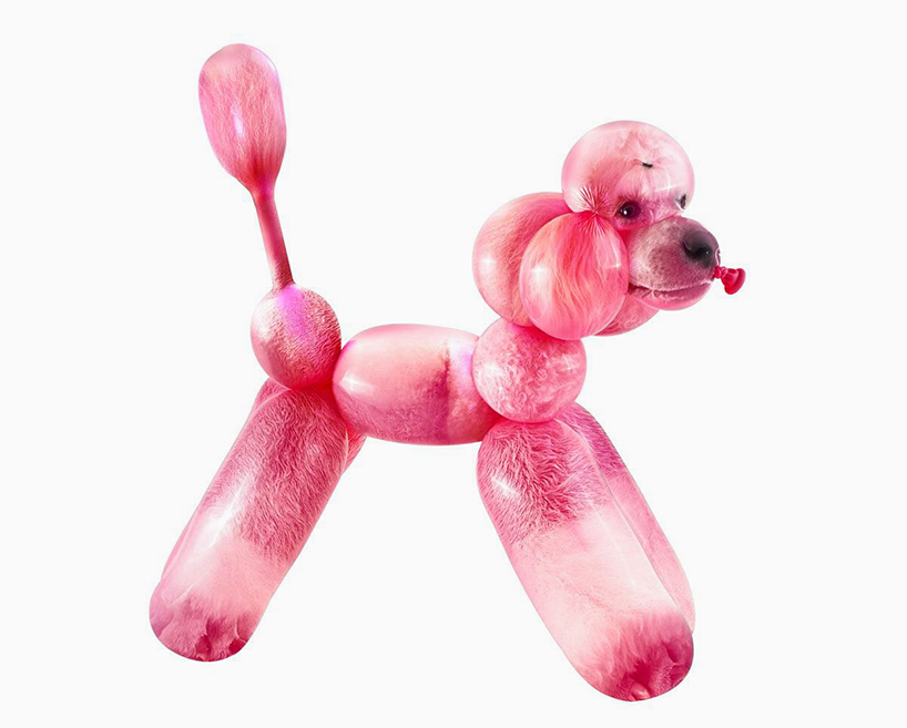 ballon-zoo-sarah-deremer-everythingwithatwist-05