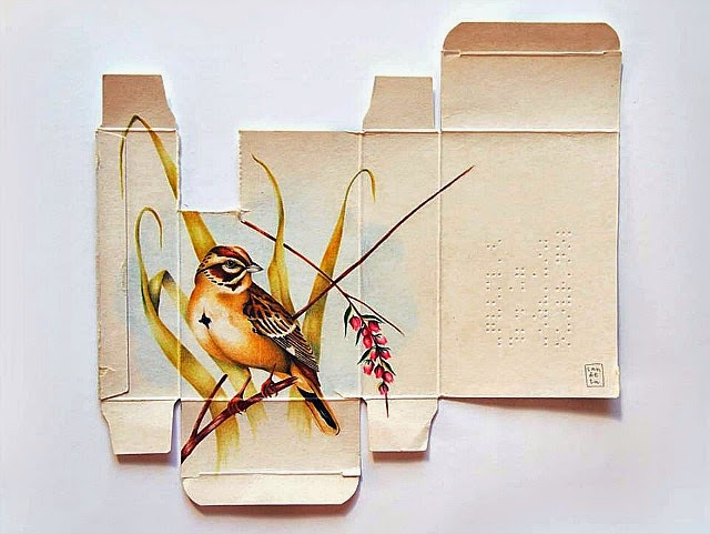 sara-landeta-birds-everythingwithatwist-08
