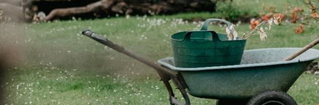 5 Ways to Spruce Up Your Backyard